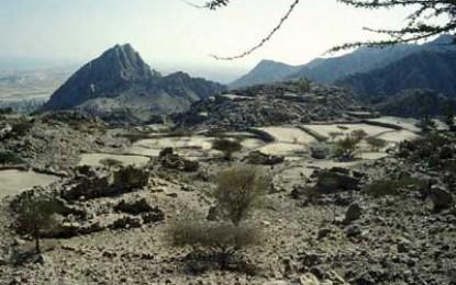 Arabian Archaeology