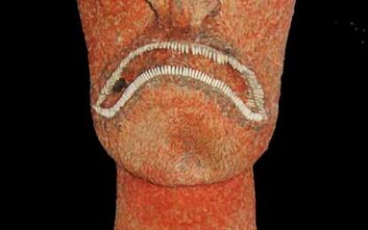 Polynesia: Art and Divinity