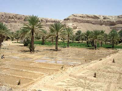 Early irrigation systems in ancient Yemen
