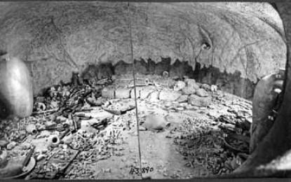 Excavated Jericho bones may help combat TB