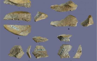 Shell Tools Rewrite Australasian Prehistory