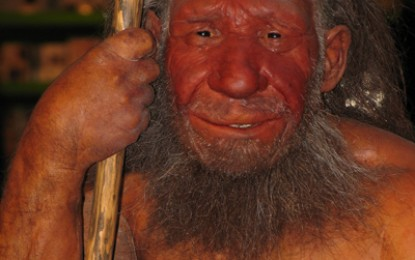 News on Neanderthals