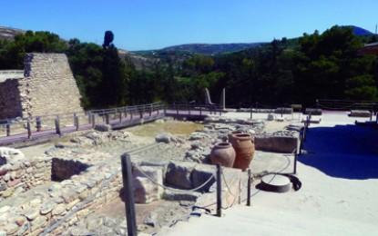 Crete: Olives