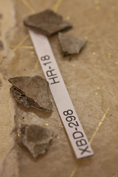 Alaska: Oldest subarctic North American human remains found