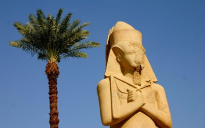 Cairo: Egyptology in crisis