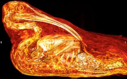 Egypt: Peckish Mummies