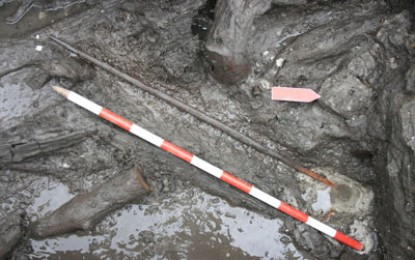 Europe's oldest Neolithic bow