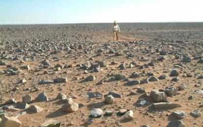 Namibia's mandolins