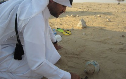 Qatar: Bridging the Gulf