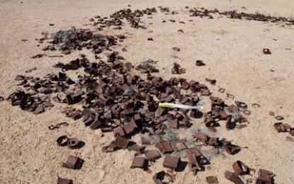 Africa: Namib Desert
