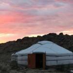 CWA travels to Mongolia