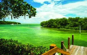 Richard Hodges travels to the Florida Keys