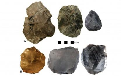 Stone-tool evolution
