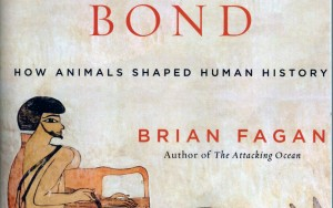 Book review: The Intimate Bond