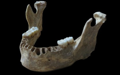 Neanderthal Ancestry