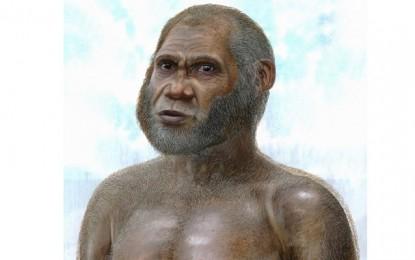 Pre-modern humans