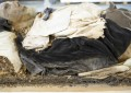 A Fragrant Grave: Revealing the mummified remains of a 17th-century bishop