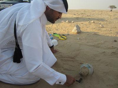 Qatar: Bridging the Gulf – World Archaeology