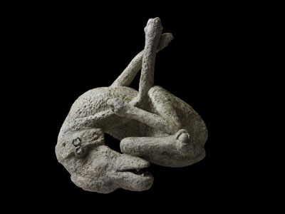 A plaster cast of a guard dog from the House of Orpheus in Pompeii - where the famous 'cave canem' mosaic (below, left) was also found.